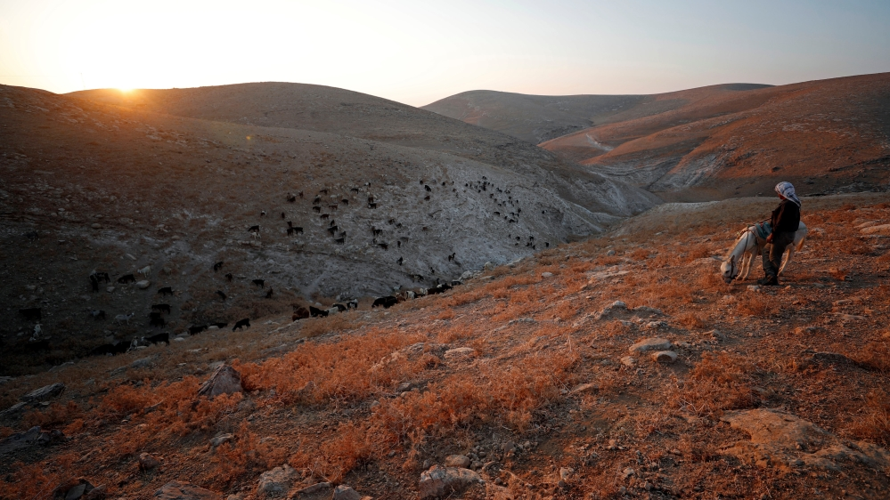 Israel creates seven 'nature reserves' in occupied West Bank