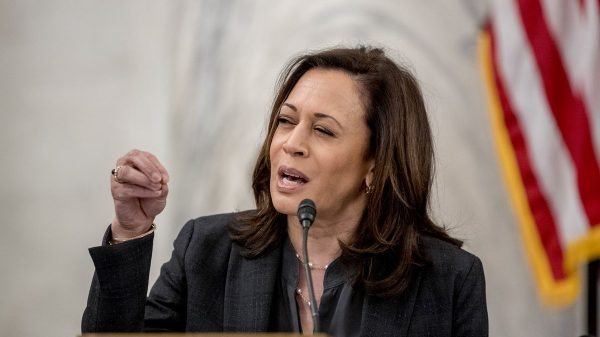 Lindsey Graham: Kamala Harris is leading candidate for Joe Biden's VP pick