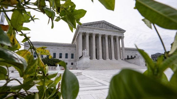 Supreme Court leaves DACA in place; justices say Trump cut corners to end program