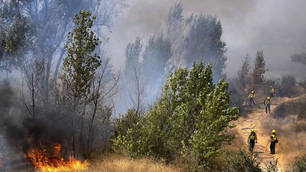 Eric Garcetti, Los Angeles mayor, blames climate change for fires, rejects overgrown forests charge